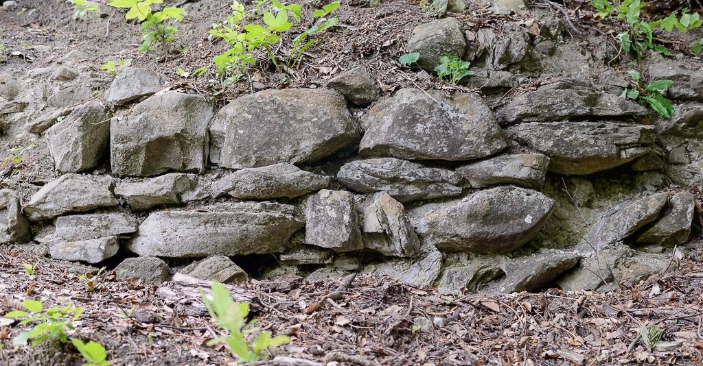 Mauerreste der Burg Hoh Wülflingen