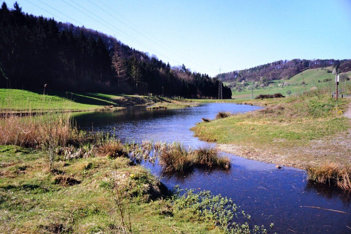 Die Dättnauer Weiher sind ein Amphibienlaichgebiet von nationaler Bedeutung