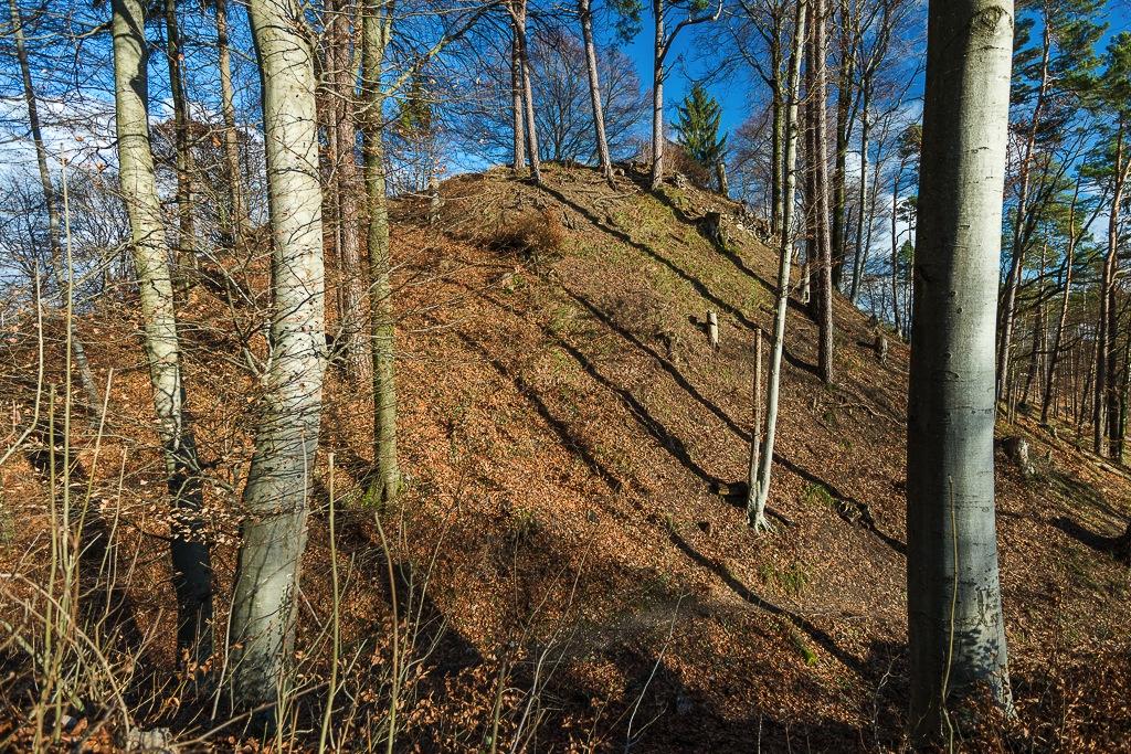 Gipfelplateau Hoh Wülflingen von Westen aus