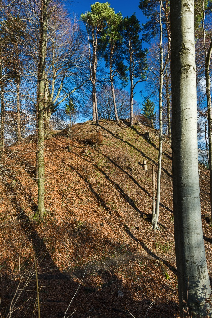 Burgstelle Hoh Wülflingen von Westen aus