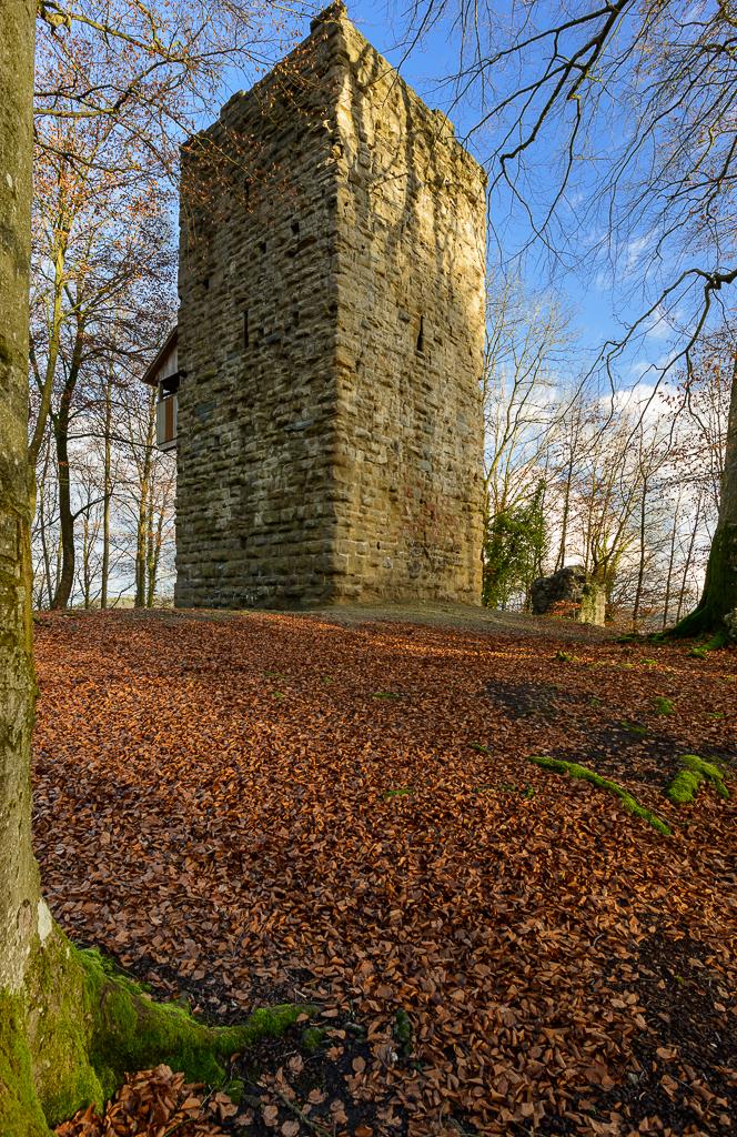 Burgruine Alt Wülflingen von Südwesten her