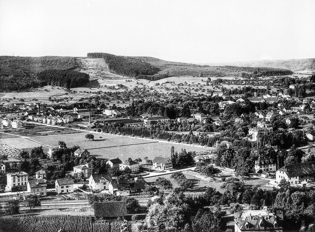 Panorama vom Bäumli 1888: Auffallend sind die grossen Kahlschlagflächen auf dem Eschenberg (© Stadtbibliothek Winterthur)