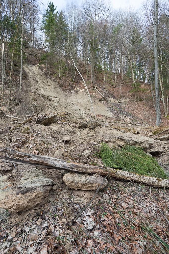 Hangrutsch am Dättnauer Berg
