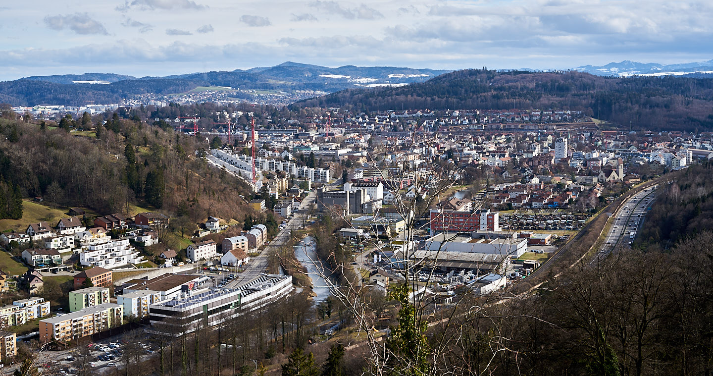 Burgruine Alt-Wülflingen