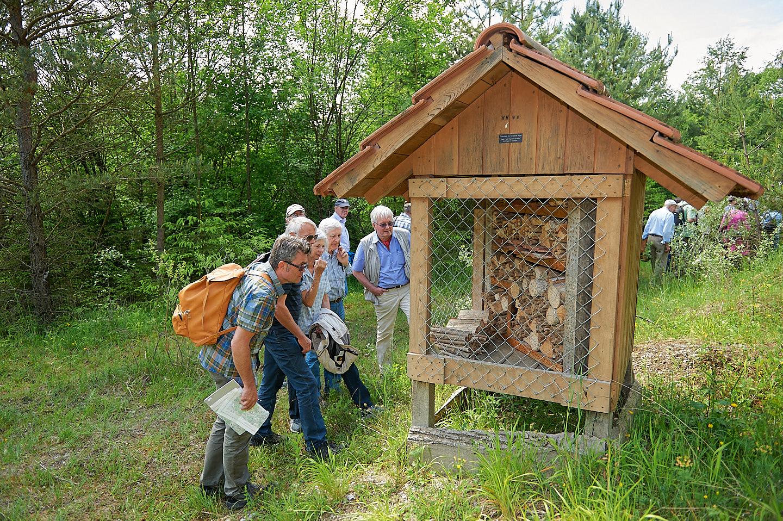 Bienenhotel in der Sandlochgrube auf dem Chomberg (© 2015 Michael Wiesner)